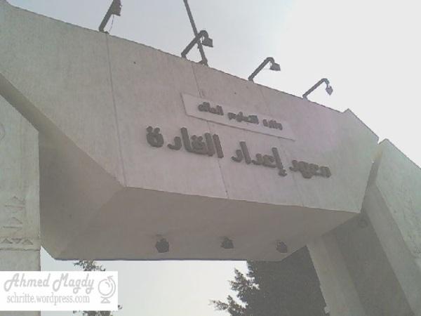 تغطية .. المعسكر  التثقيفي الصيفي لشباب الجامعات: معهد إعداد القادة - حلوان 2010